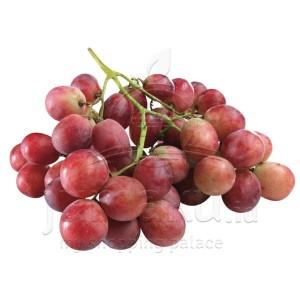 Anggur Merah (Vitis vinivera)