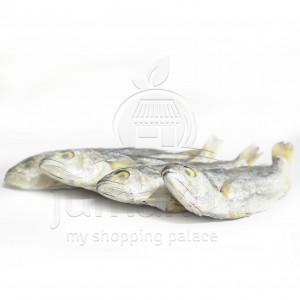 Ikan Asin Kepala Batu