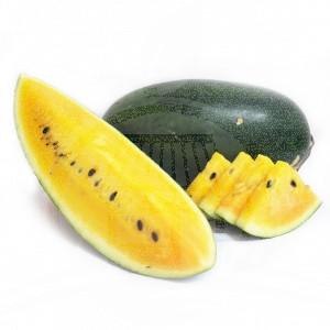Semangka Kuning